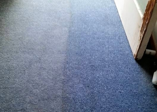 Five reasons to call Carpet Recovery today